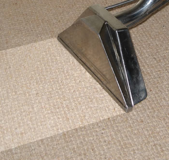 Service Information About Carpet Amp Oven Cleaning Company